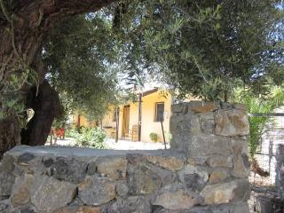 Sarakina Spiti ... pure relaxation - Ierapetra vacation rentals