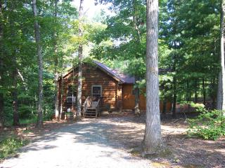 Wonderful Cabin with Deck and A/C - Woolwine vacation rentals