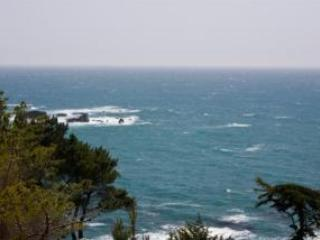 Spectacular Oceanside Getaway White Water Views! - Gualala vacation rentals