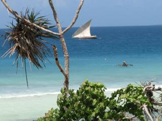 Charming Villa with Internet Access and Water Views - Zanzibar vacation rentals