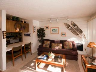 Mountain Shadows Studio Condo Family Friendly ~ RA520 - Mammoth Lakes vacation rentals