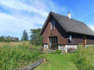 Nice Cottage with Balcony and DVD Player - Saaremaa vacation rentals