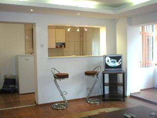 Celntral Bucharest - Large apartment - Bucharest vacation rentals