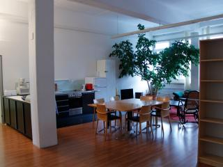 spacious loft in the center of Staefa - Staefa vacation rentals