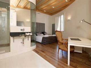 Ciutat Vella Luxury Apartment A - Barcelona vacation rentals