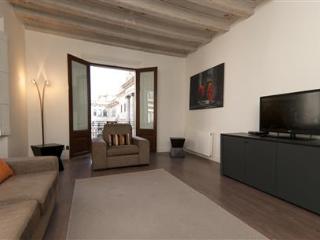 Ciutat Vella Luxury Apartment E - Barcelona vacation rentals