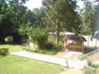 Back Garden - Taunton House Bed & Breakfast - Pietermaritzburg - rentals