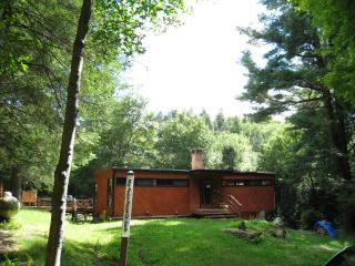 Amazing 12 Acre Catskills Home - Claryville vacation rentals