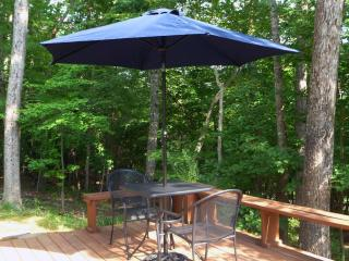 Forest Retreat for Two at Smith Mountain Lake - Huddleston vacation rentals