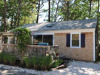 OCEANSIDE COTTAGE W/POOL! - WKIRS - Wellfleet vacation rentals