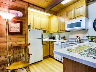 Convenient condo w/ Sun Valley Resort pool & hot tub, walk to Sun Valley Lake! - Sun Valley vacation rentals