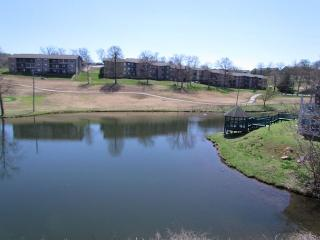 Serenity Falls- Pet Friendly, 2 Bedroom, 2 Bath Condo - Branson vacation rentals