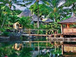 World Famous Property of Kapoho - Kapoho vacation rentals
