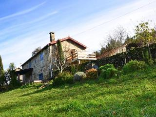 Lovely cottage in northwestern Spain - Campo Lameiro vacation rentals