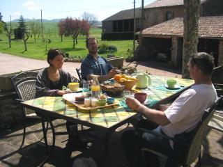Chambres d'hôtes à la ferme du Mas Azais - Montlaur vacation rentals