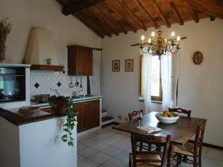 Historic 2 Bedroom Tuscan Apartment - Castelnuovo Berardenga vacation rentals