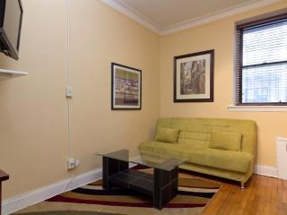 Sleeps 4! 1 Bed/1 Bath Apartment, Upper East Side, Awesome! (8139) - Manhattan vacation rentals