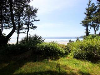 Charming oceanfront home w/Agate Beach view & shared hot tub - Newport vacation rentals