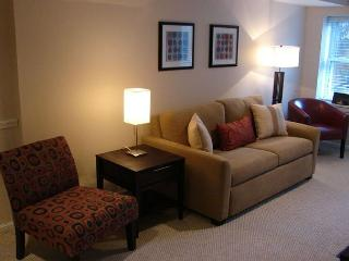 1 BR Capitol Hill townhome-apt in Washington, DC - Washington DC vacation rentals