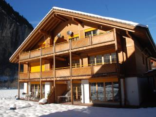 Alpine retreat in a Tolkienesque valley - Lauterbrunnen vacation rentals