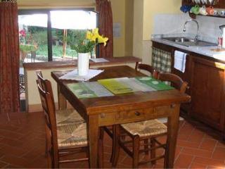 1 bedroom Apartment with Internet Access in Figline Valdarno - Figline Valdarno vacation rentals