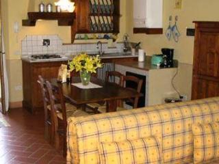Nice Condo with Internet Access and Television - Figline Valdarno vacation rentals