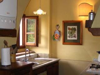 Cozy 1 bedroom Figline Valdarno Apartment with Internet Access - Figline Valdarno vacation rentals