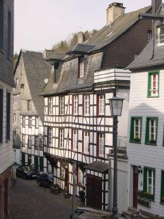 Bright Monschau House rental with Dishwasher - Monschau vacation rentals