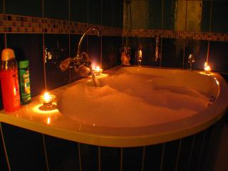 Wine Apartment with huge bath tub - Budapest vacation rentals