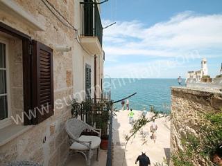 Cozy 1 bedroom House in Polignano a Mare - Polignano a Mare vacation rentals