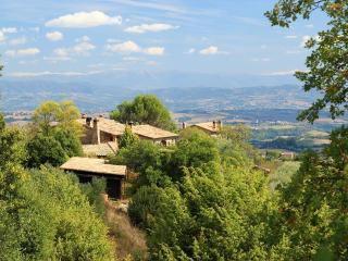 La casetta nel bosco / BACCO apartment - Monte Vibiano Vecchio vacation rentals
