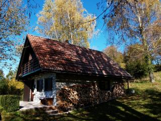 Charming Chalet with Kettle and Books - Kobarid vacation rentals
