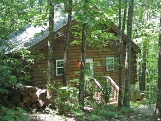 Romantic 1 bedroom Cabin in Sautee Nacoochee - Sautee Nacoochee vacation rentals