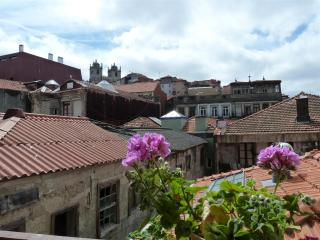 Charming apartment in Historical Area of Porto - Porto vacation rentals