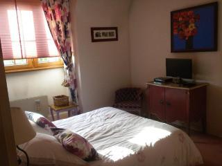 Chambre d'Hote de charme & Spa Colmar - Colmar vacation rentals