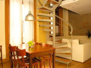 Beauty  Master Duplex  4 - San Telmo - Buenos Aires vacation rentals