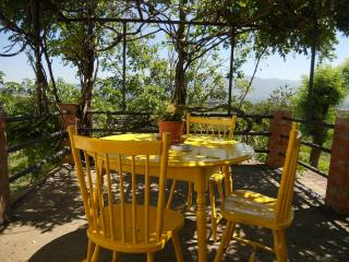 APARTMENT IN TIPICAL TUSCANY OLIVE OIL FARM - Italy vacation rentals