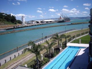 Riverside Apartment 309 - Gisborne vacation rentals