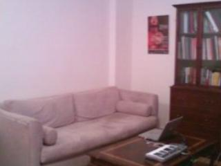 Living Room with comfortable sofa that pulls out into a queen bed; television with cable - 1 Bedroom Apartment near Yankee Stadium available July 16 - August 26 - Bronx - rentals