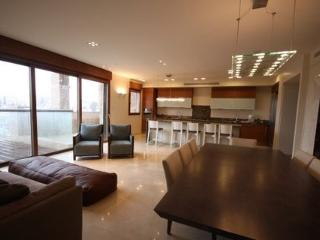 Extraordinary 5 BR King David Crown MAMILLA - Jerusalem vacation rentals