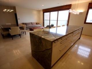 Extraordinary 5 BR King David Crown MAMILLA - Jerusalem vacation rentals