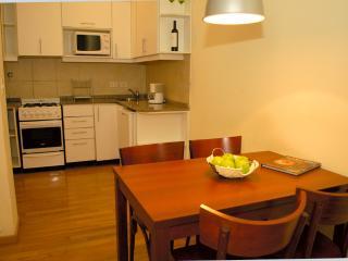 Big Duplex Loft 3 - San Telmo - Buenos Aires vacation rentals