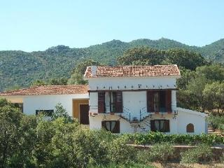 3 bedroom Bed and Breakfast with Internet Access in Loiri Porto San Paolo - Loiri Porto San Paolo vacation rentals