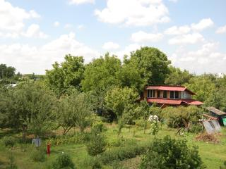 beautiful house ,in a beautiful place surrounded by forest,near Bucharest - Bucharest vacation rentals