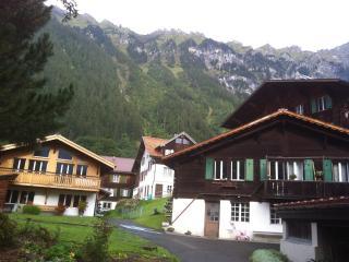 Wengen Apartment Chalet Marderhüsli - Wengen vacation rentals
