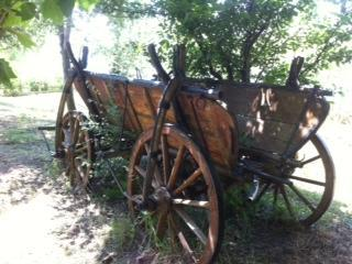 an 100 years old original wagon - Get  the Romance back! incl FISHING AND LEISURE! - Calarasi - rentals