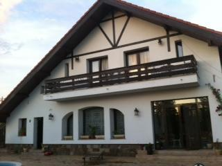 Get  the Romance back! incl FISHING AND LEISURE! - Calarasi vacation rentals