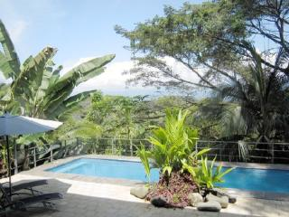 Ultra Modern Villa Overlooks Tropical Rain Forest MA08 - San Carlos vacation rentals