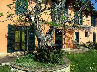 Wonderful apartment in Umbria - Fico apartment - Perugia vacation rentals