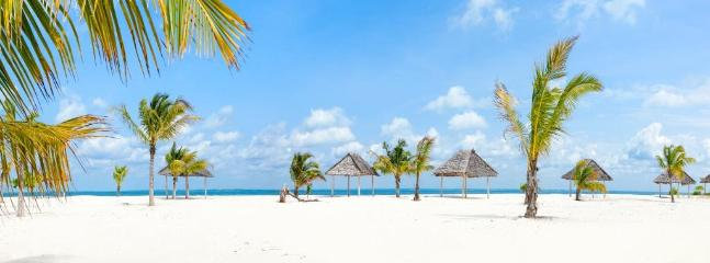 The amazing beach! - Kono Kono Beach Resort Garden Villa - Zanzibar - rentals